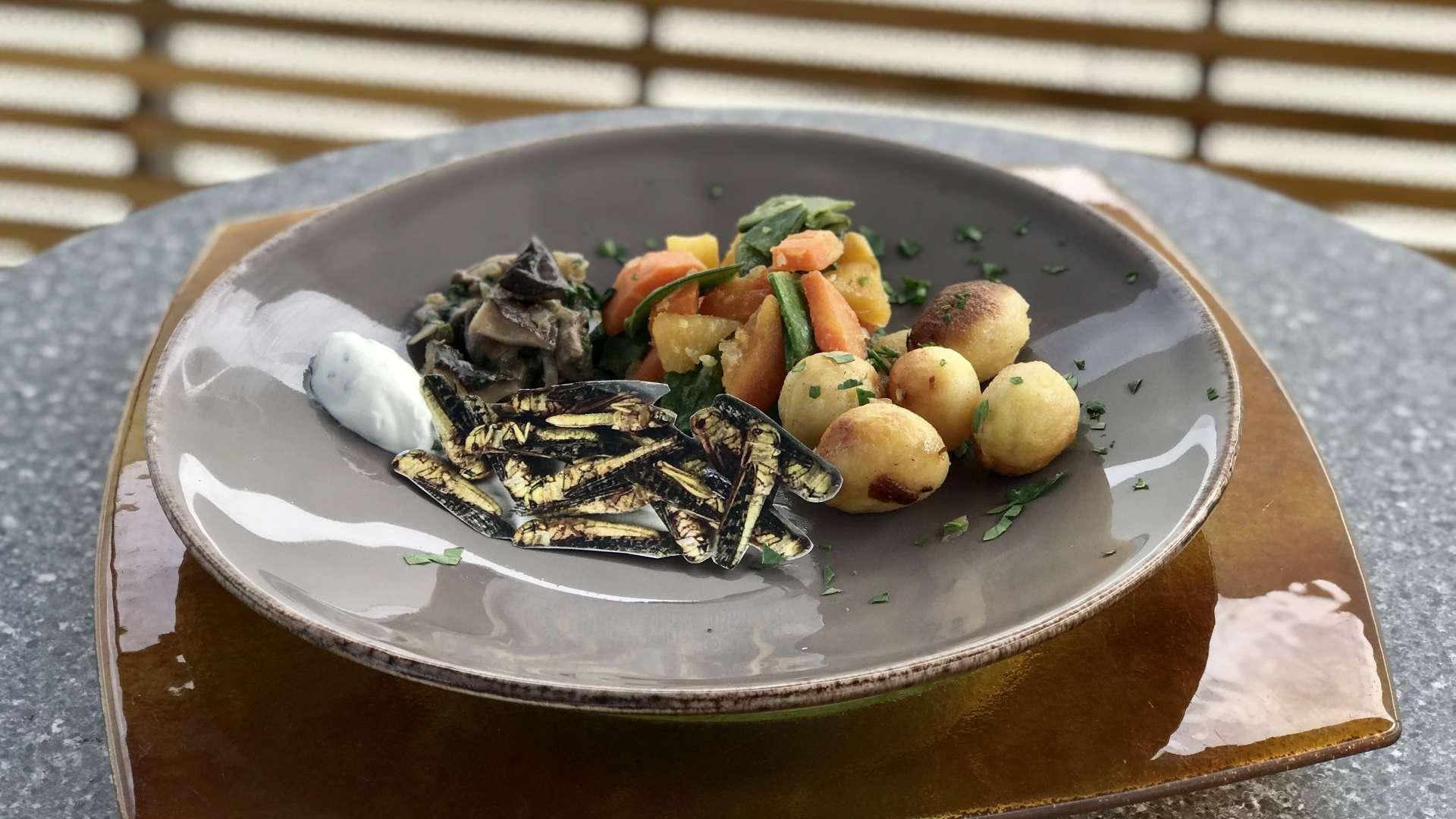 In vielen Ländern, wie zum Beispiel in Thailand, gelten Insekten als Delikatesse.